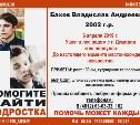 Помогите найти подростка Владислава Бахова, 9 месяцев поисков