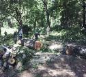"""Про """"парк Рогожинский"""", каток """"Тропик"""" и его подарки жителям."""