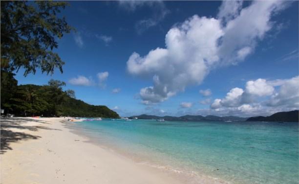 Сладкий ноябрь или остров мечты!