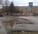 Дорожные переходы в Алексине