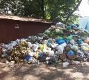 В Киреевске закрыли полигон отходов