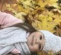 Голосуйте за осенние фото в конкурсе «На ковре из жёлтых листьев»