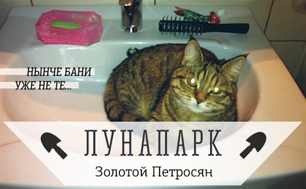 Без кота и банька не та!