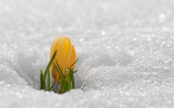 Шел по лесу Весна...