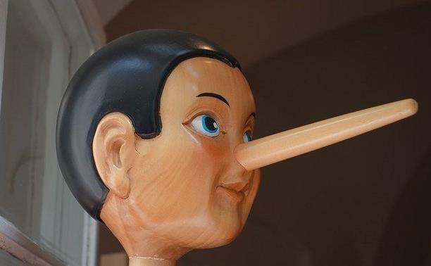Как понять, что собеседник вам лжет? Советы психолога