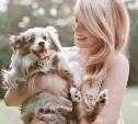 Начался фотоконкурс маленьких собачек