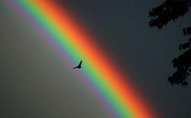 Дотянись до радуги.