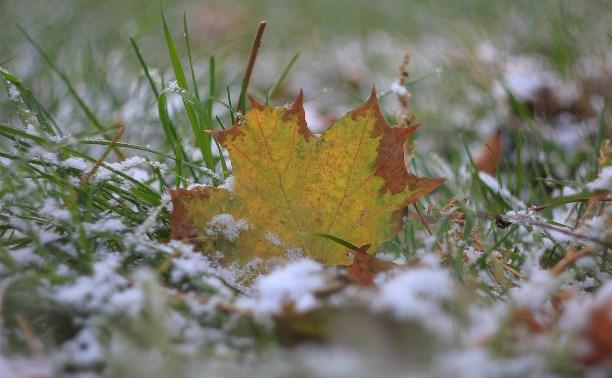 Сегодняшний снегопад в Туле