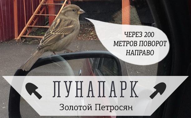 Крылатый навигатор