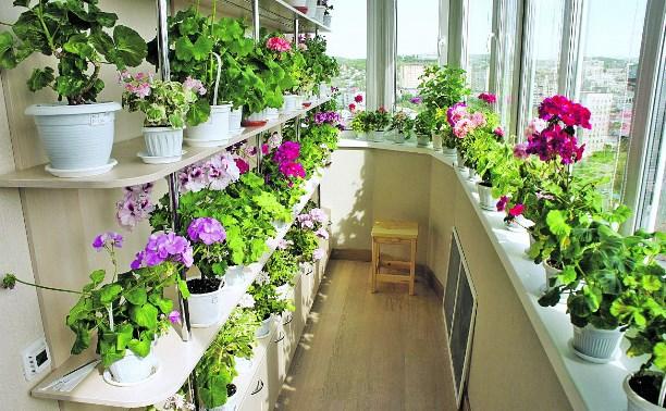 Маленький сад для горожанина
