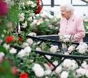 Челси-2018: Неделя моды для сада и огорода
