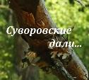 Суворовские дали...