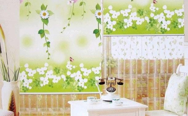 Рулонные шторы с фотопечатью в сети магазинов «ШИК: Шторы и Карнизы»
