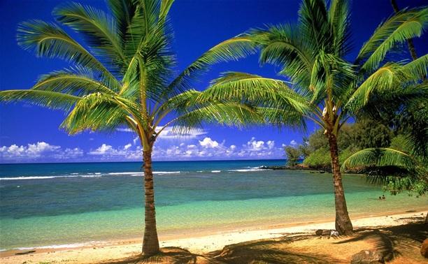 Горящие пляжные туры!