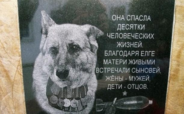 Собака-герой по имени Елга