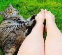 Голосуем в фотоконкурсе «Ах, эти ножки!»