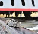 О проведении Тульскими транспортниками профилактического мероприятия «Безопасность»