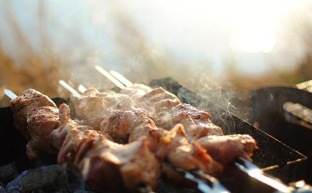 Где в Туле комфортно пожарить шашлыки: обзор Myslo