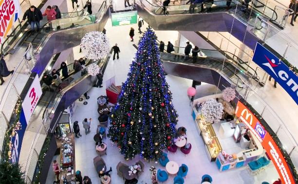 Незабываемые новогодние каникулы для детей и взрослых в центре Тулы