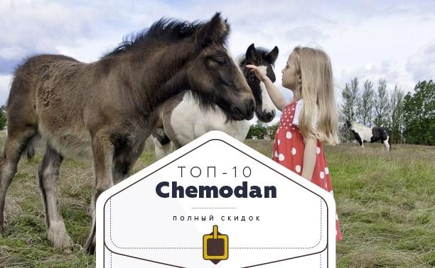 Топ-10 от «Чемодан»: абонементы в спортзал, пони-клуб и центр звукотерапии