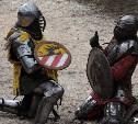 Рыцари шести городов сразились на «Тульских баталиях-2015»