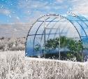 Казан, мангал, теплица: 5 крутых полезных подарков к Новому году