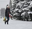 Снегопад в Туле 9 января