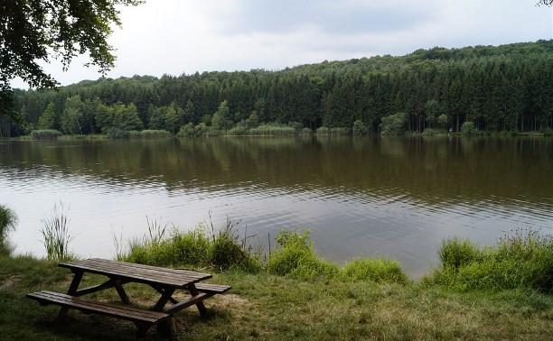 Три прекрасных места отдыха в Тульской области: «Приокский дворик», «Краинка» и «Ясная Поляна»