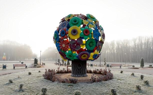 Ледяное утро в парке