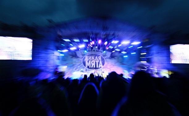 Выходные на фестивале «Дикая Мята – 2014»: Ярко, музыкально, свежо!