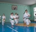 Талантливые каратисты живут в Щёкино