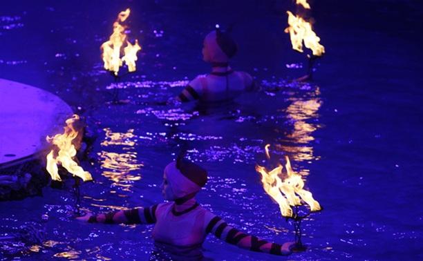 В Тульском цирке прошла премьера аквашоу