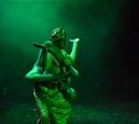 Тульский театр показал пластическую историю любви