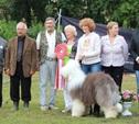 Бобтейл Апполо стал лучшим псом в стране!