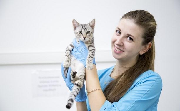 Тульский центр ветеринарной медицины открылся по новому адресу