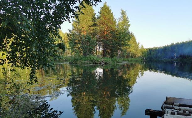 Семь мест в Тульской области для отдыха у воды с палатками