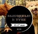 Выходные в Туле: 15-17 мая