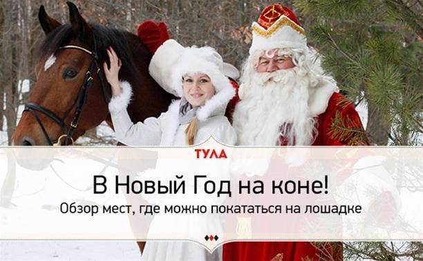 В Новый год на коне!