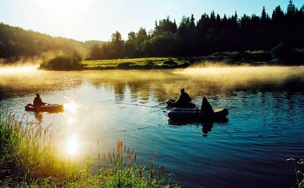 Экотуризм в Тульской области: три места для яркого отдыха на природе