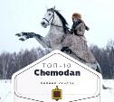 Топ-10 от «Чемодан»: химчистка, вафли и конные прогулки