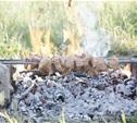 Где пожарить шашлык на майских?