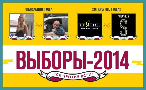 Выборы-2014
