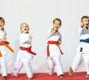 Выбираем спортивную секцию для ребенка