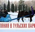 Новогодние гуляния в тульских парках: «Олимпийские каникулы»