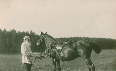 Толстой любил ездить на Делире и хотел вывести свою породу лошадей
