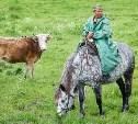 Русское поле фермера Кравцова