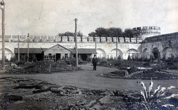 Истории Тульского кремля: блеск и нищета ботанического сада