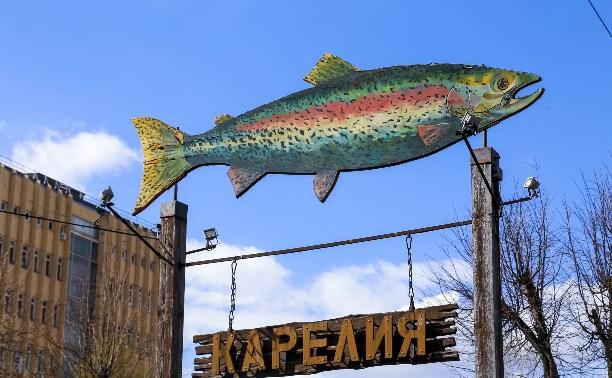 Магазин «Карелия»: рай для туристов и рыбаков