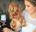 Стерилизация собак и кошек: мифы и реальность