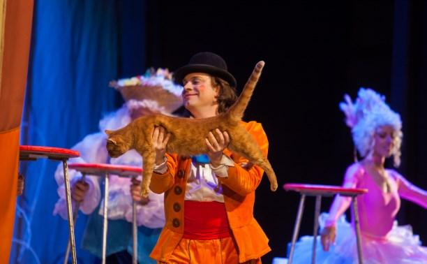 Владимир Куклачёв: Если кошка тебя приняла, она станет самым верным другом!